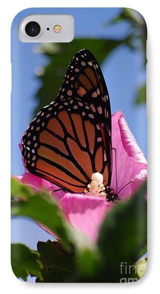 Monarch 2 Phone Case by Tannis  Baldwin