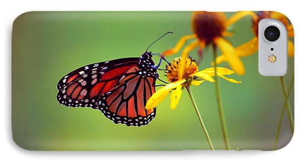 IPhone Case featuring the photograph Monarch 2013 by Beth Akerman