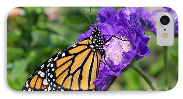 IPhone Case featuring the photograph Monarch And Pincushion Flower by Steve Augustin