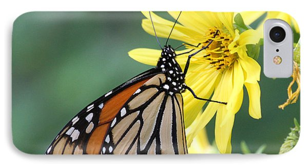 IPhone Case featuring the photograph Monarch Beauty by Doris Potter