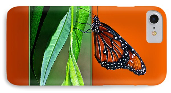 Monarch Butterfly 01 Phone Case by Thomas Woolworth