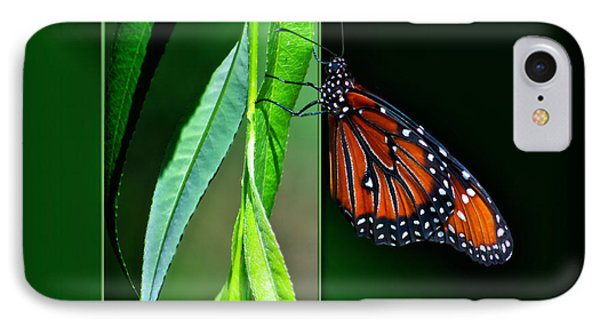 Monarch Butterfly 04 Phone Case by Thomas Woolworth