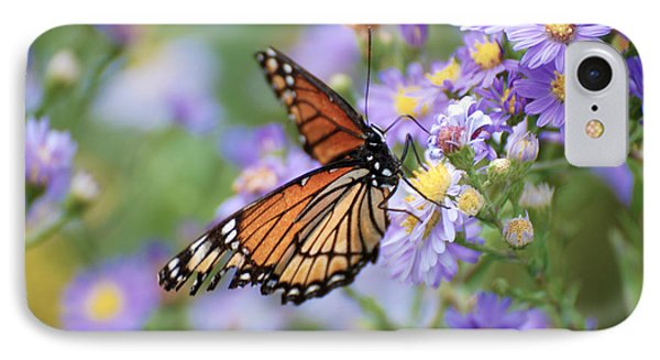 Monarch Butterfly 3 IPhone Case