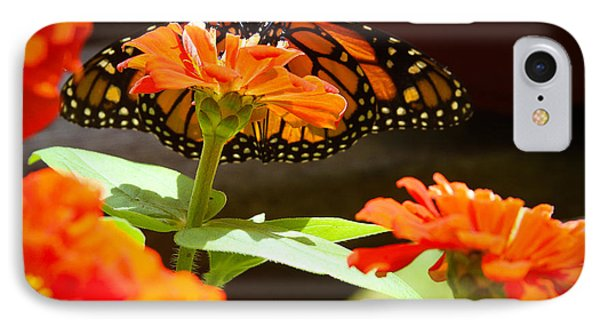 Monarch Butterfly II IPhone Case by Patrice Zinck