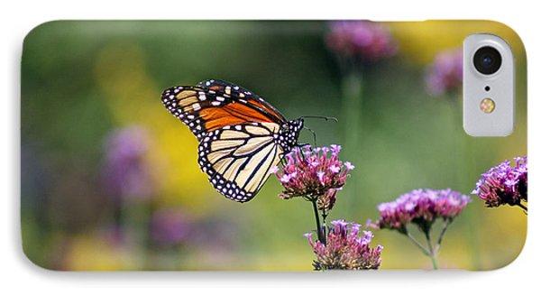 Monarch Butterfly In Field On Verbena Phone Case by Karen Adams