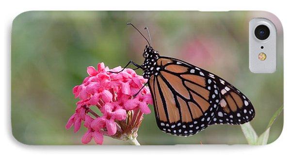 Monarch Butterfly Phone Case by Kim Hojnacki
