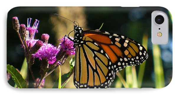 IPhone Case featuring the photograph Monarch Butterfly by Lingfai Leung