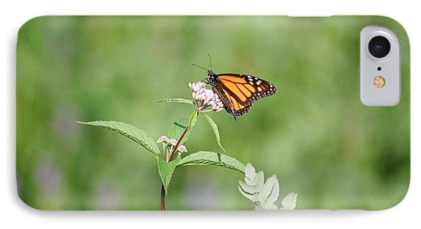 IPhone Case featuring the photograph Monarch by David Porteus