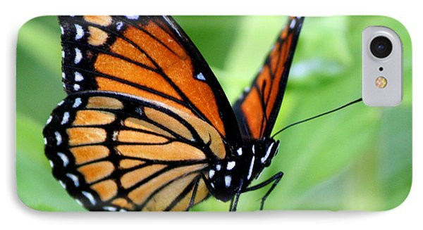 Monarch Dreaming  Phone Case by Neal Eslinger