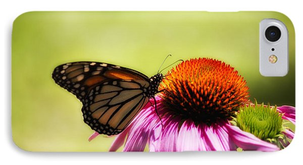 Monarch Glow IPhone Case by Shelly Gunderson