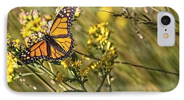 Monarch Hatch IPhone Case
