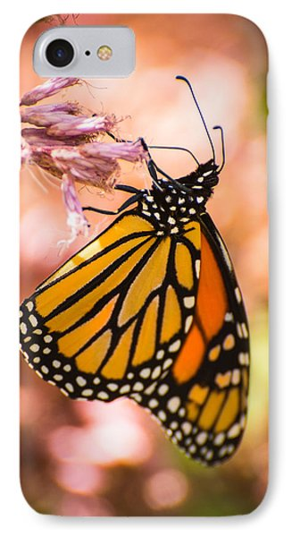 IPhone Case featuring the photograph Monarch by Janis Knight