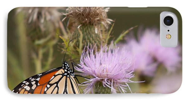 Monarch Phone Case by Jim Finch