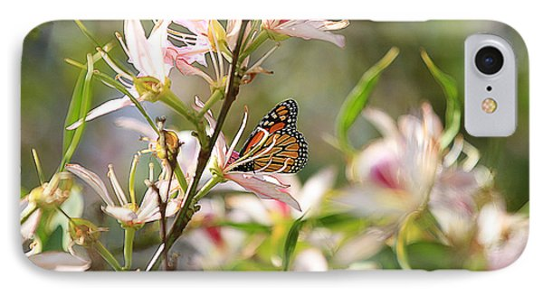 Monarch IPhone Case by Kevin Ashley