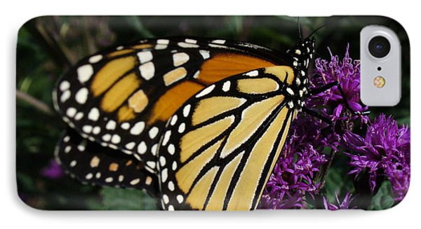 IPhone Case featuring the photograph Monarch by Lingfai Leung