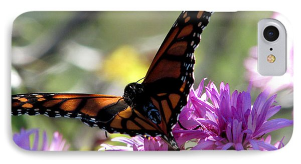 Monarch Meditation IPhone Case
