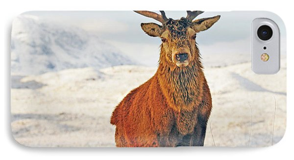 Monarch Of The Glen IPhone Case