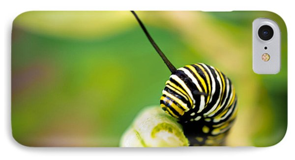 Monarch Offspring Squared IPhone Case by TK Goforth