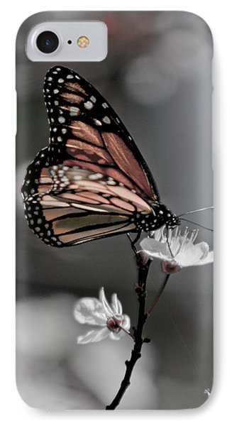 Monarch On Blossom IPhone Case