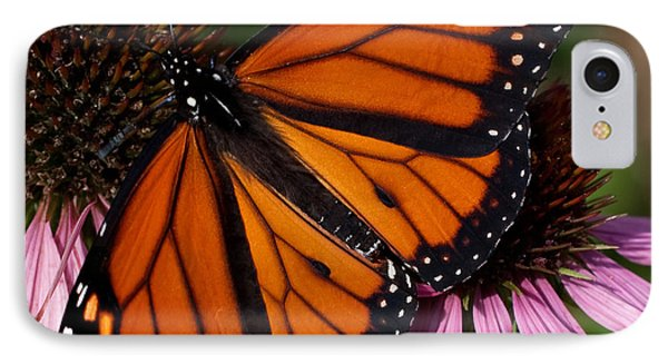 IPhone Case featuring the photograph Monarch On Purple Coneflower by Barbara McMahon