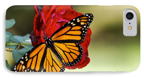 IPhone Case featuring the photograph Monarch On Rose by Debbie Karnes