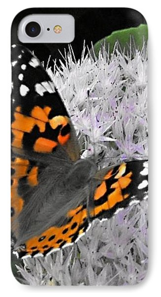 Monarch IPhone Case by Photographic Arts And Design Studio