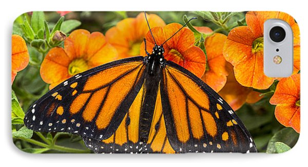 Monarch Resting Phone Case by Garry Gay