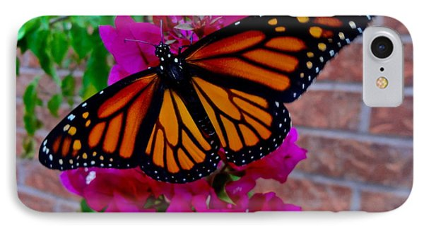 IPhone Case featuring the photograph Monarch by Sarah Mullin