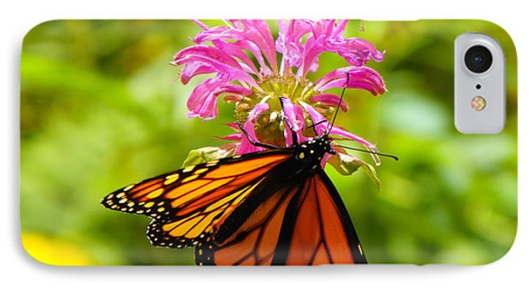 Monarch Under Flower IPhone Case by Erick Schmidt