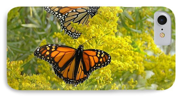 Monarchs On Goldenrod IPhone Case by Susan  Dimitrakopoulos
