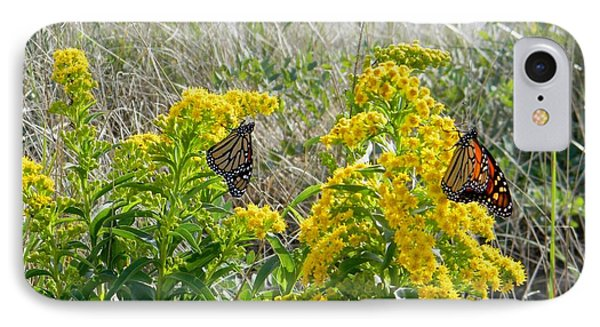Monarchs On The Beach IPhone Case by Nance Larson