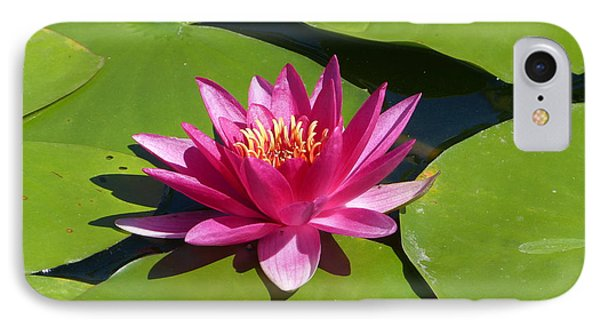 Monet's Waterlily IPhone Case