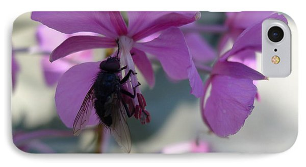 IPhone Case featuring the photograph Montana Black Fly by Joel Deutsch