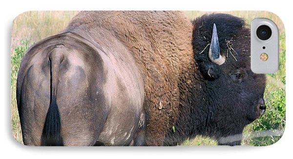 Montana Buffalo Bison Bull IPhone Case by Karon Melillo DeVega