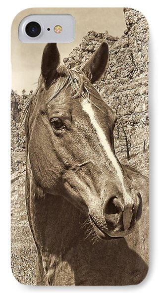 Montana Horse Portrait In Sepia Phone Case by Jennie Marie Schell