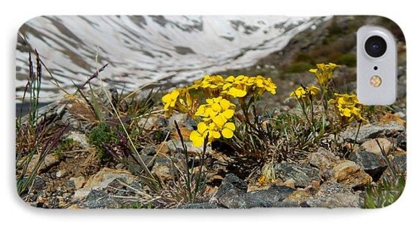 Blue Lakes Colorado Wildflowers IPhone Case by Dan Miller