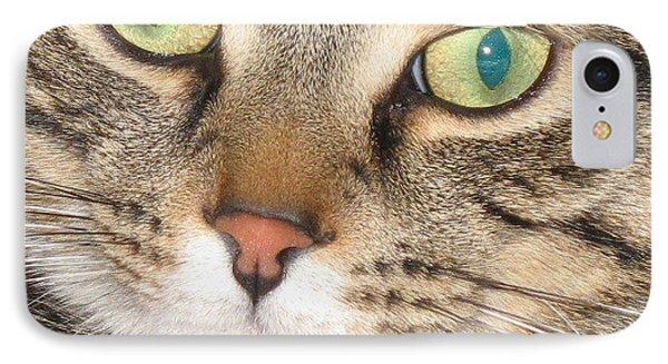 IPhone Case featuring the photograph Monty The Cat by Jolanta Anna Karolska
