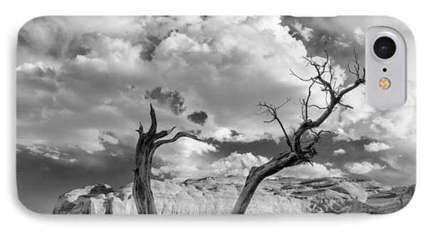 Monument Valley Juniper Tree And Mesa IPhone Case by Silvio Ligutti