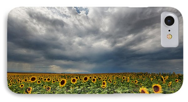 IPhone Case featuring the photograph Moody Skies Over The Sunflower Fields by Ronda Kimbrow