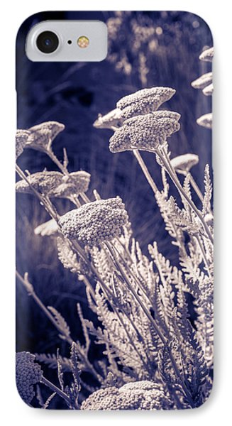 IPhone Case featuring the photograph Moonlight Yarrow by Dave Garner
