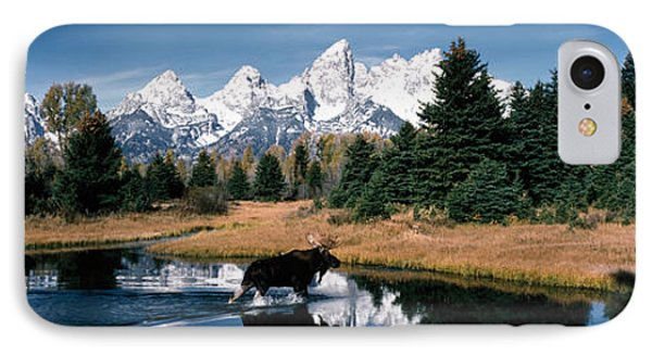 Moose & Beaver Pond Grand Teton IPhone Case by Panoramic Images