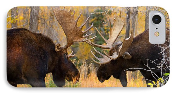Moose Battle IPhone Case by Aaron Whittemore