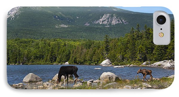 Moose Baxter State Park Maine IPhone Case