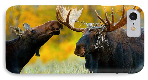 IPhone Case featuring the photograph Moose Be Love by Aaron Whittemore