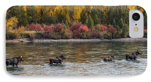Moose Crossing 2 IPhone Case by Leland D Howard