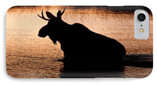 Moose Silhouette 3569   Phone Case by Brent L Ander
