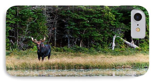 Moose IPhone Case by Ulrich Schade