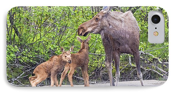 Moose With Twins IPhone Case by Stephen  Johnson