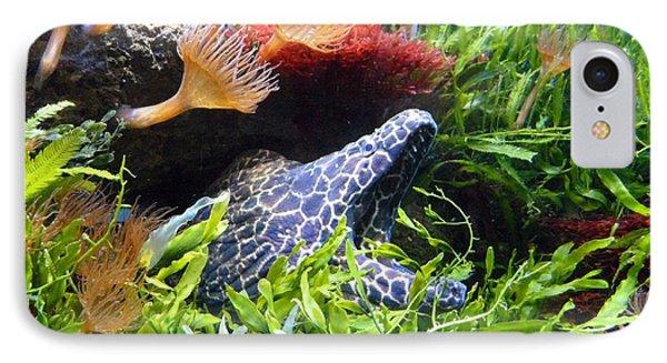 Moray Underwater Phone Case by Tilen Hrovatic