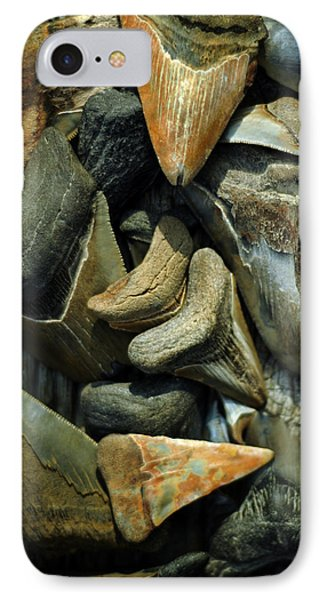 More Megalodon Teeth IPhone Case by Rebecca Sherman
